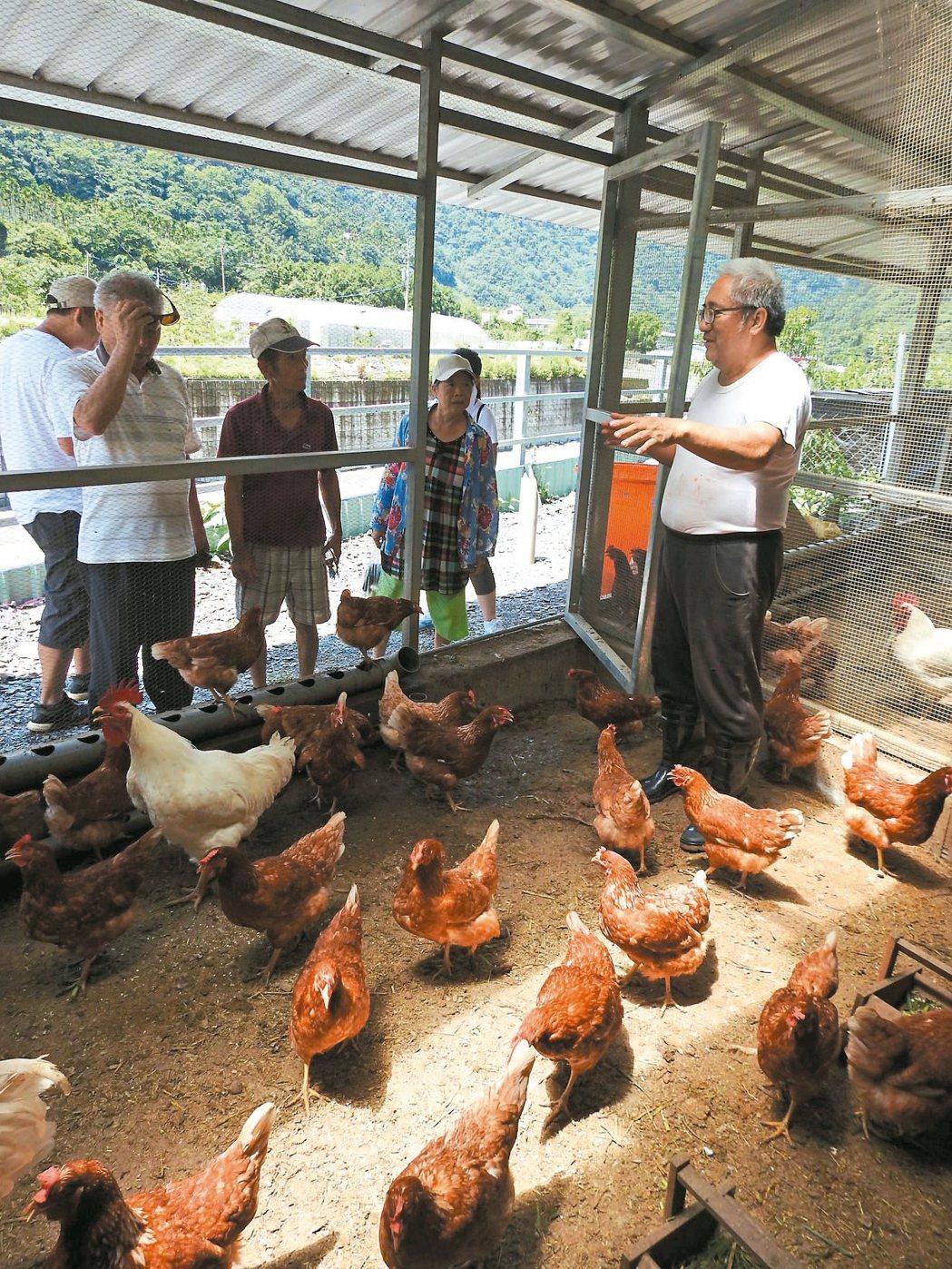 瓦歷斯.貝林向來訪遊客說明雞舍空間,以及創設農場的理念和願景。 記者賴香珊/攝影