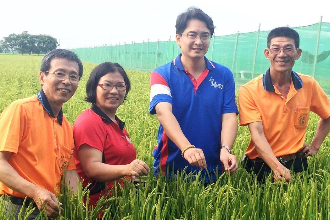 倪菀庭(左二)以自然農法種植稻米,不僅把先生身體照顧好了,年營收還破百萬元。記者...