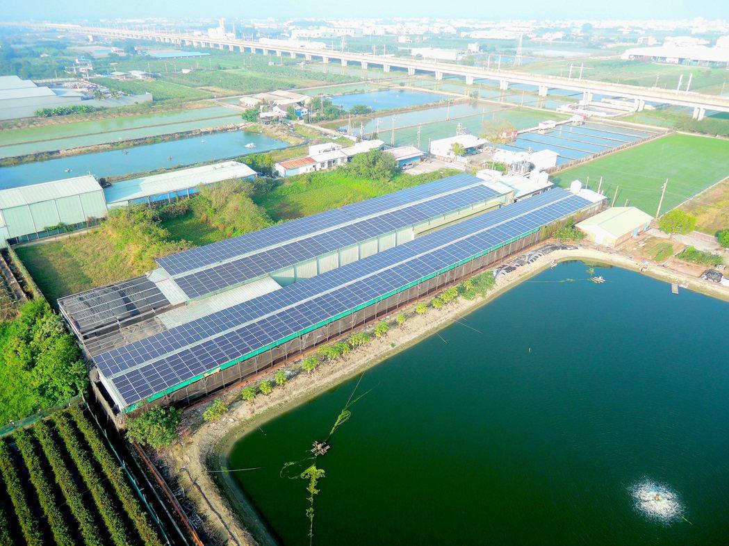 高雄阿蓮區畜牧場在屋頂裝設太陽能光電,不僅發電同時兼具降低畜禽舍溫度。圖/高雄市...
