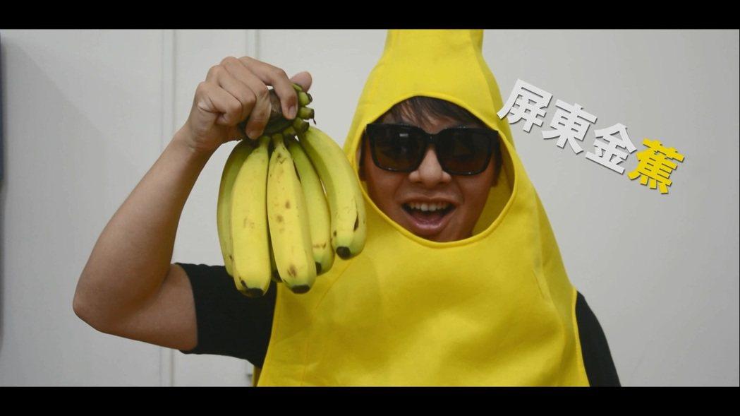 屏東網紅促銷香蕉 香蕉研究所建議產量產期大調查