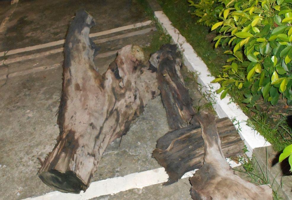 漂流木已被潘姓男子切割成四大塊。圖/警方提供