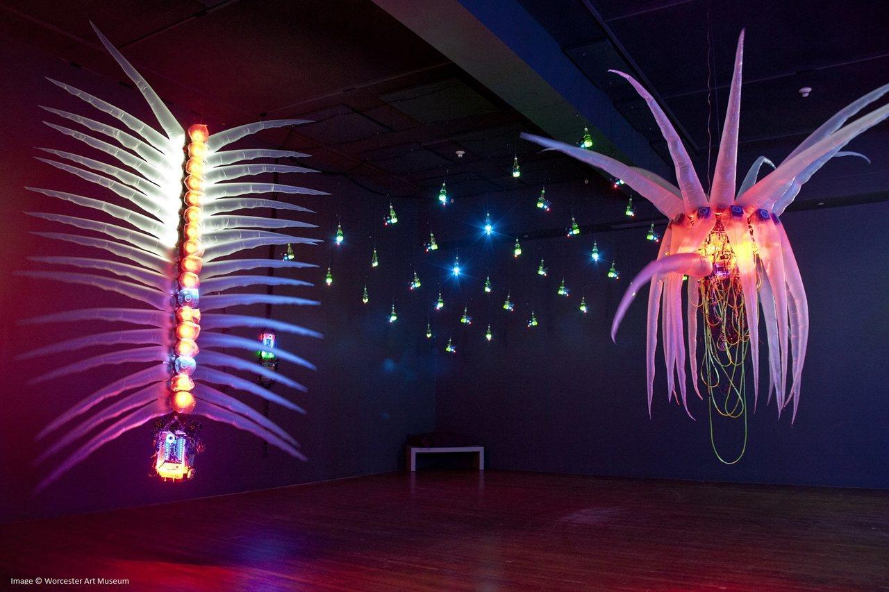美國麻州沃斯特美術館推出黃世傑個展。圖/文化部提供