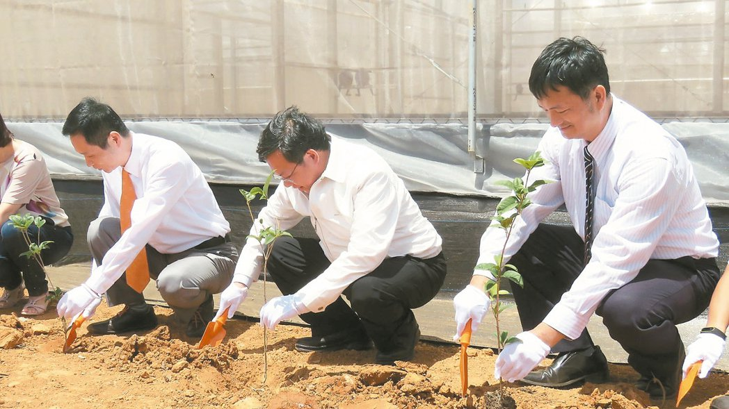 台灣房屋集團在桃園市成立「友善食安園區」,昨天栽植「公益樹」。 記者張弘昌/攝影