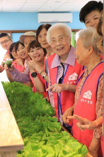 台南市府社會局表示,台南有多項關懷長輩措施,敬老不只發卡。聯合報系資料照/記者曹...