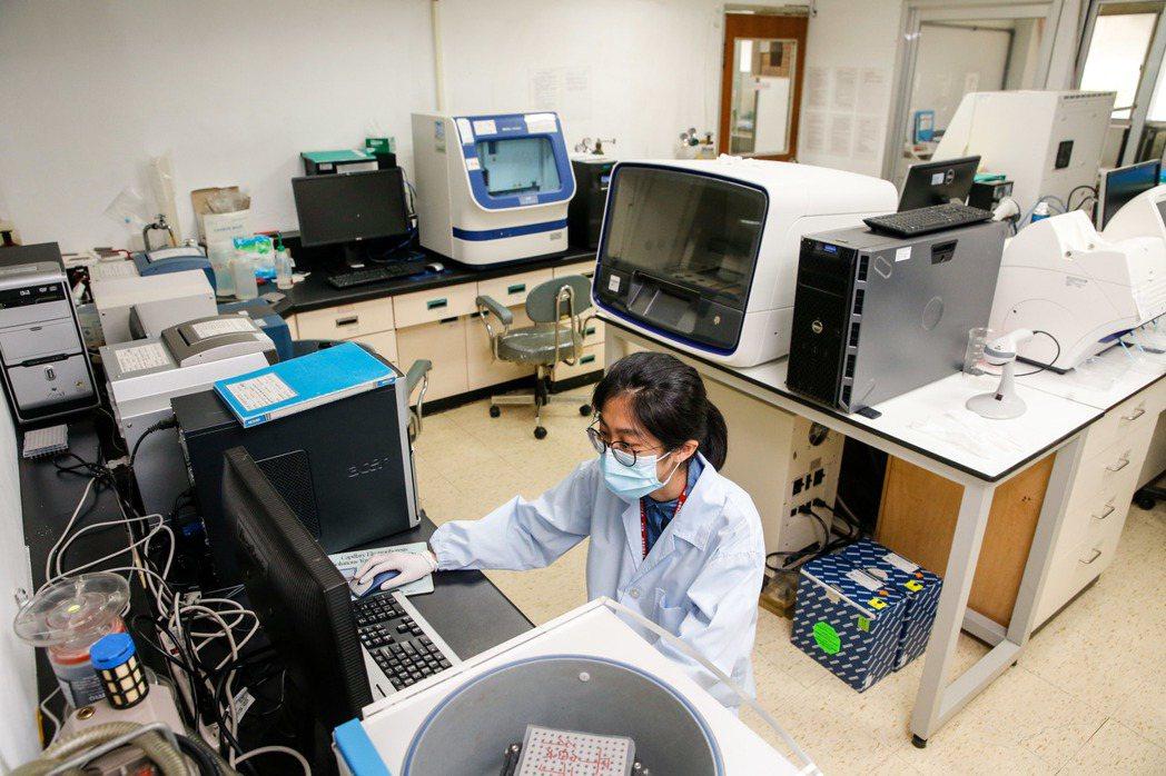 調查局與林務局上午在調查局本部舉行簽訂「建立台灣檜木DNA鑑定技術資料庫」備忘錄...