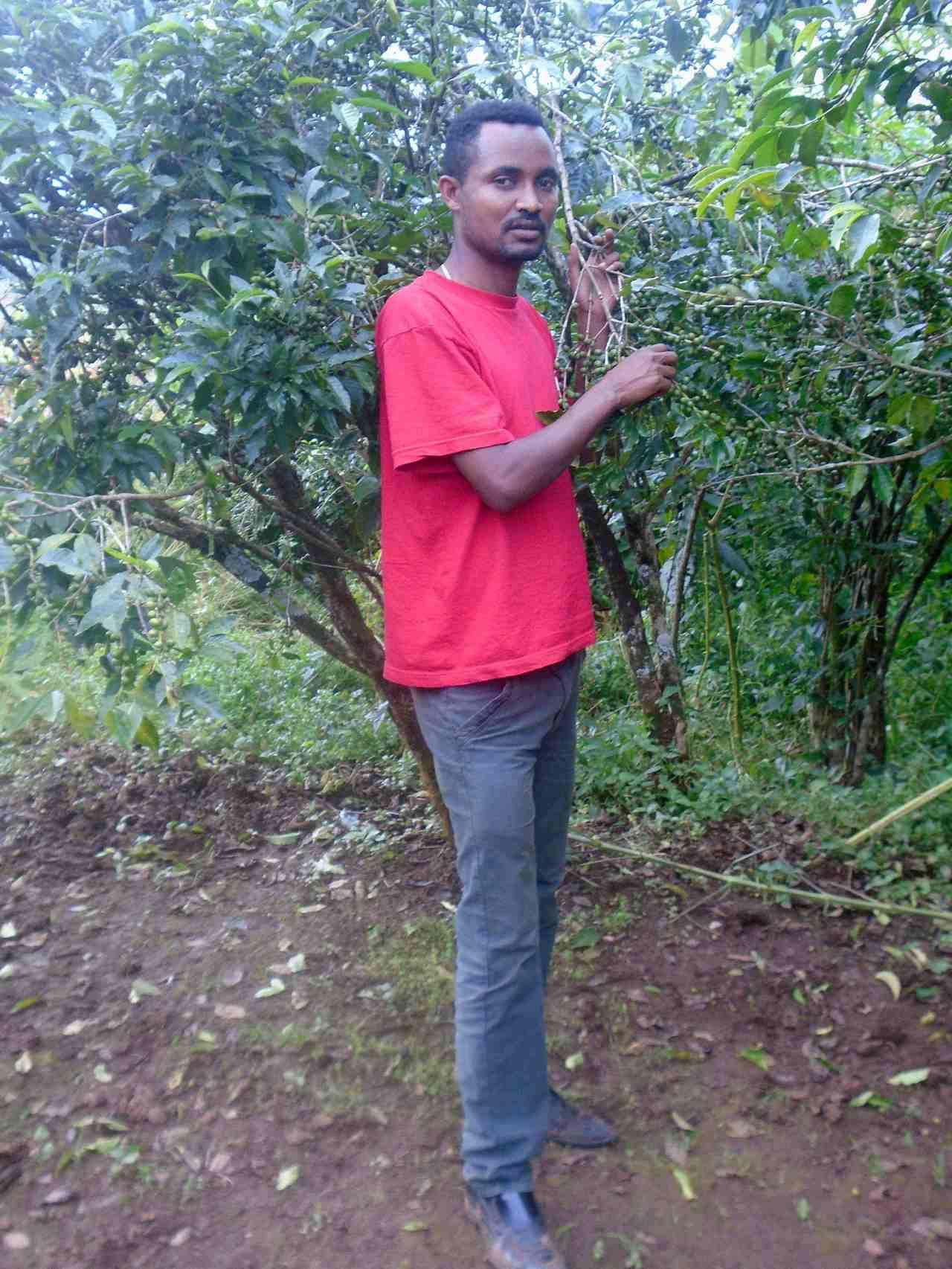 台科大衣索比亞學生BULTI_ABDISA_KERAYU家裡種植咖啡。圖/台科大...