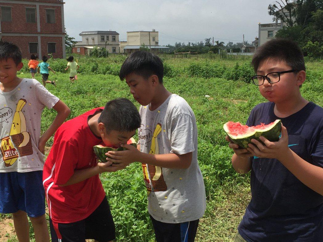 小朋友當場吃起西瓜,直說好吃!記者蔡家蓁/攝影