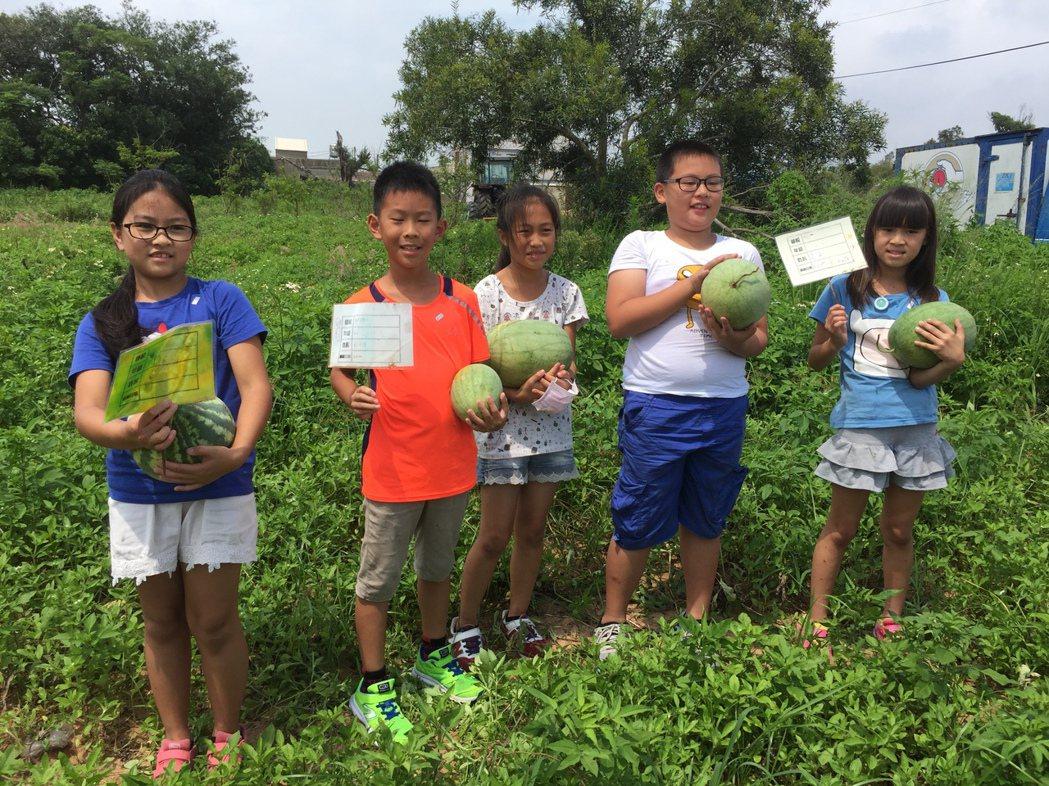 金門多年國小的小朋友,昨天採收自己種植的西瓜,小朋友抱著自己種的大西瓜,開心合影...