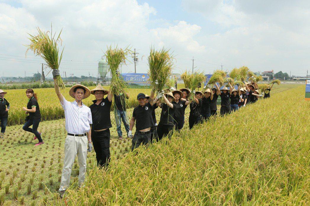 雲林縣斗南鎮農會近年積極推廣與農民契作台南11號水稻及越光米,不僅保障農民收益,...