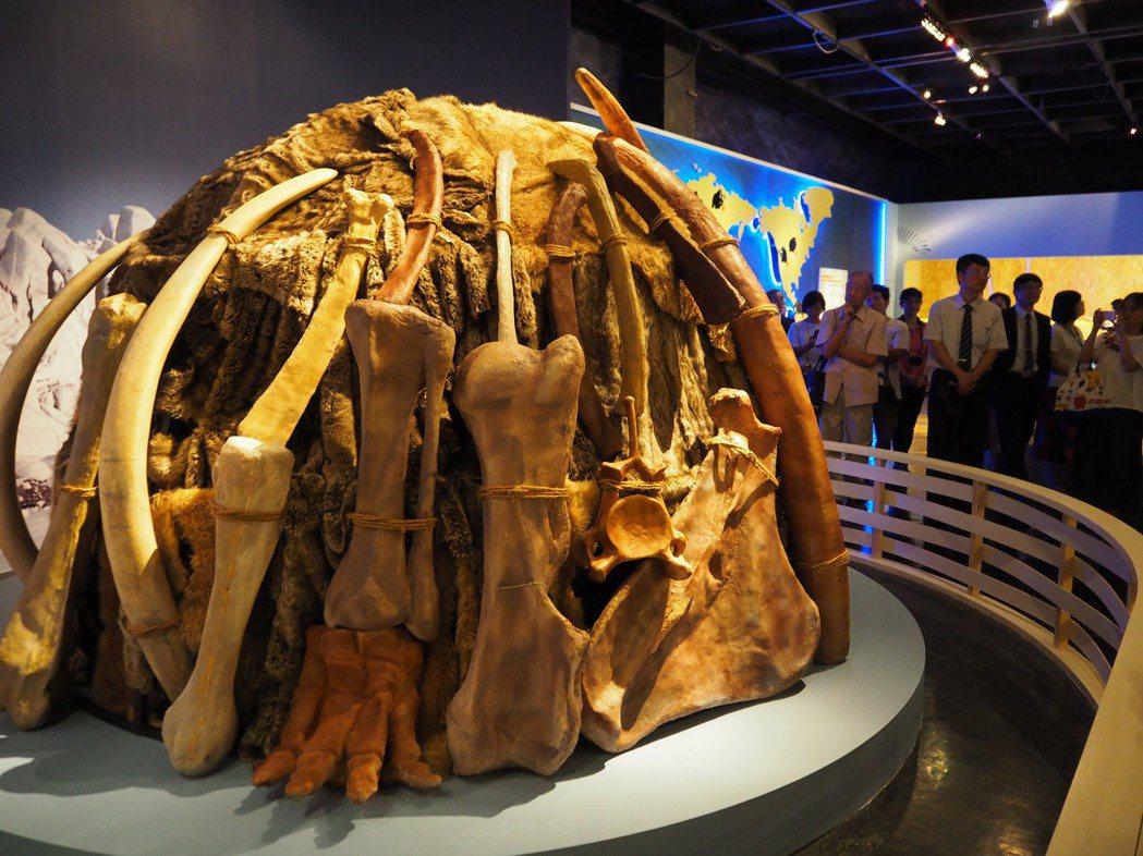 長毛象是最早發現人類與大象共存的紀錄,冰河時期的人類,利用象牙、骨骼打造「象骨屋...