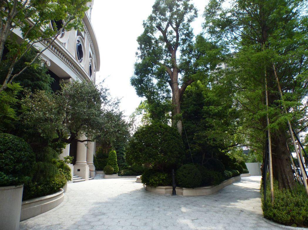 步行在聯聚保和大廈香樟花園綠蔭步道,可以聽到蟲鳴鳥叫。 記者趙容萱/攝影