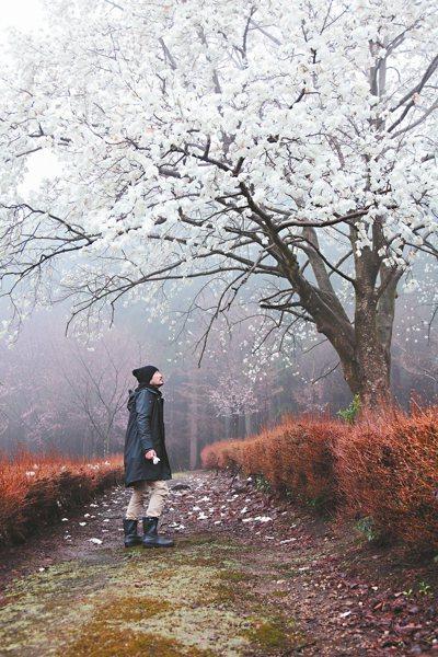 花開去旅行的金澤站。 圖/CN Flower提供