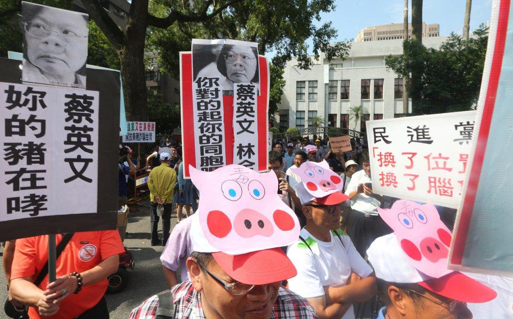 抗議蔡政府的美豬政策,大批豬農帶著豬頭面具齊聚立法院門口抗議。報系資料照