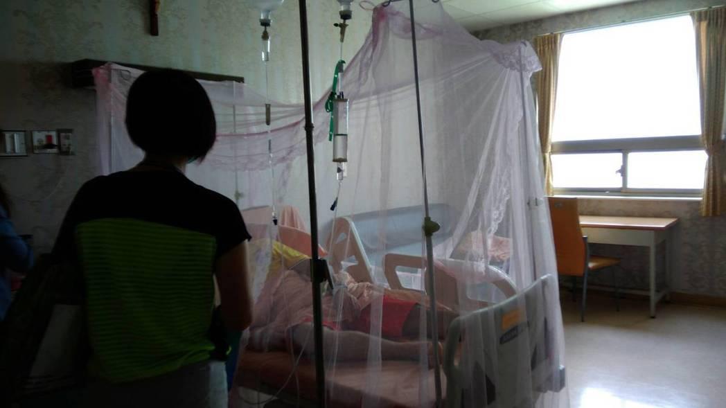 宜蘭縣一民眾確診登革熱後留院治療,院方架設蚊帳避免病情擴散。圖/宜蘭縣衛生局提供