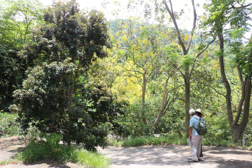 「竹湖山居」周邊環繞的綠蔭、石階與青草地,提供有心貼近自然者體驗珍貴山林資源的機...