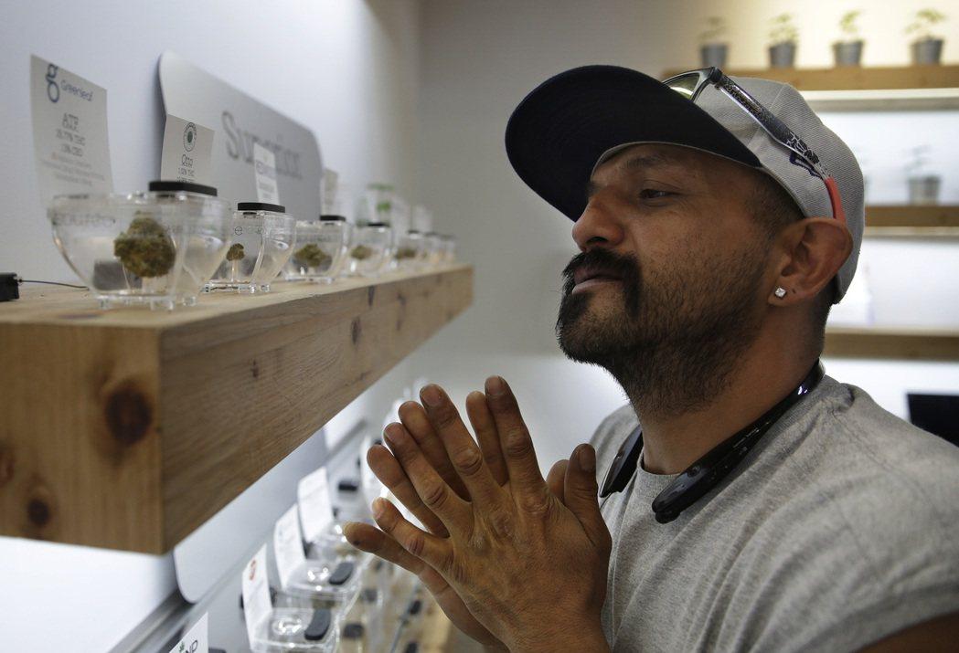 一名顧客仔細端詳拉斯維加斯大麻店內展示的商品。 美聯社