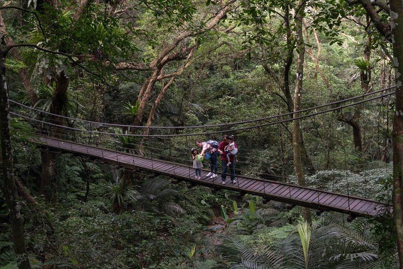 園區一環登山路線中段會經過彩虹橋