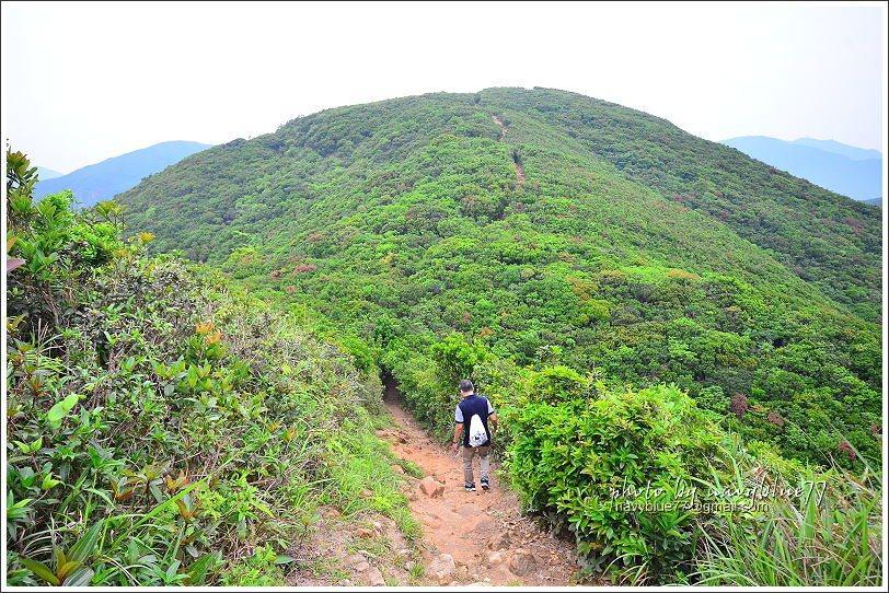 ↑由孖崗山下來,望向對面的山頭就是海拔363M的孖崗山北峰。