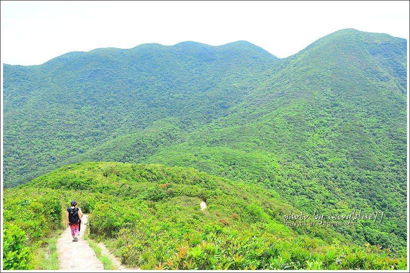 ↑回望來時路,對面右上方的山頭就是孖崗山北峰。
