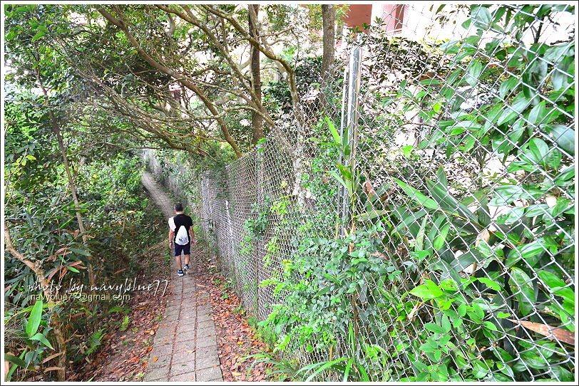 ↑網籬的右側即是陽明山莊,不過為了不讓登山者干擾社區居民,整個山莊外圍都用鐵絲網...