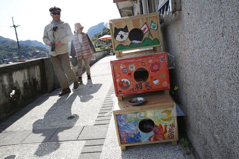 在台灣真正落實「飼主管理」前,我看不到猴硐貓遞減的可能。 圖/聯合報系資料照