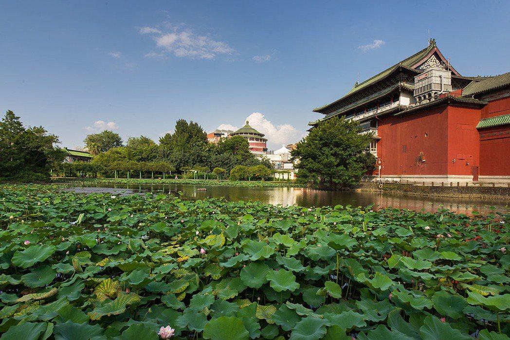 中正楷悅旁有佔地約8公頃的植物園,擁有市中心難得一見的綠地。