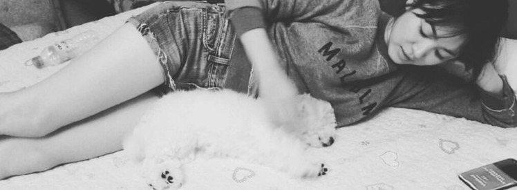 宋慧喬經常po出與愛犬的生活照。圖/摘自IG:kyo1122