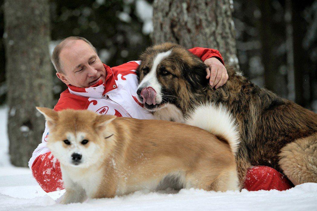 愛狗人士普亭,動物是各國領袖送禮首選,圖片中的兩隻狗分別來自日本的秋田犬,與保加...
