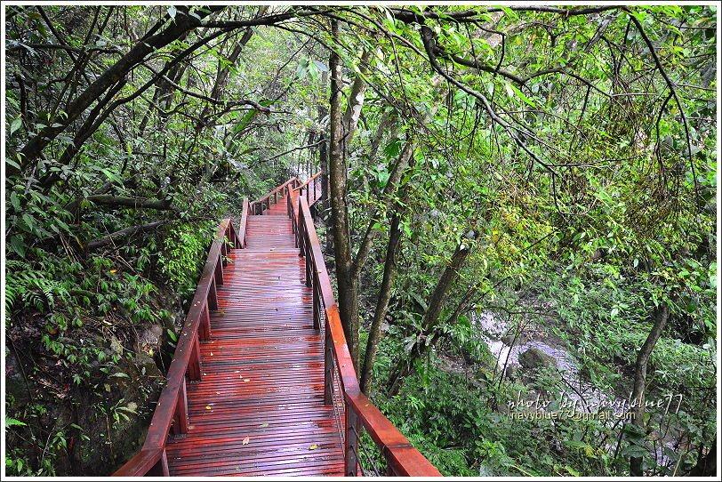 ↑仙人堀步道今年新完工的出水溪濱木棧道,沿途潺潺水聲不絕於耳。