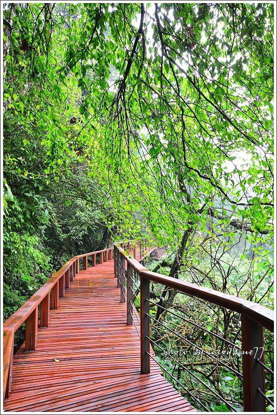 ↑步道沿線林蔭茂密,幾乎不會曬到太陽,想停下來時,靠山一側的矮欄就是坐椅,四方看...