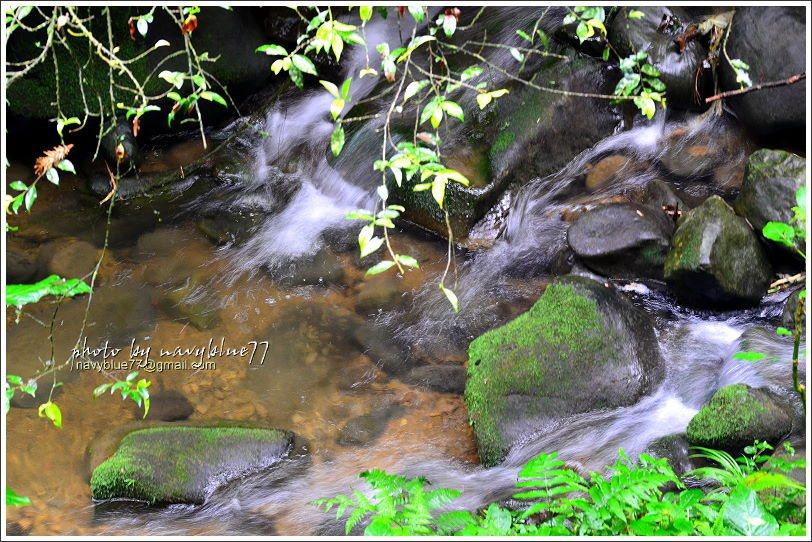 ↑出水溪的潺潺水聲最消暑。