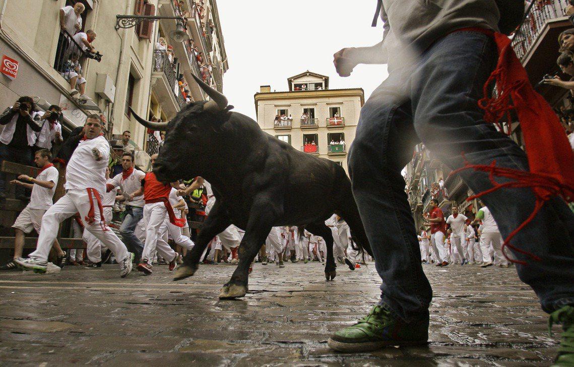 活動中,主辦單位通常會放出6頭公牛、6頭閹牛,並與滿街的挑戰者一同在潘普洛納舊城...