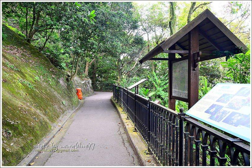 ↑山頂環迴步行徑全程都是柏油平坦路面,因為是生態教育路徑,路上常見生態解說牌。