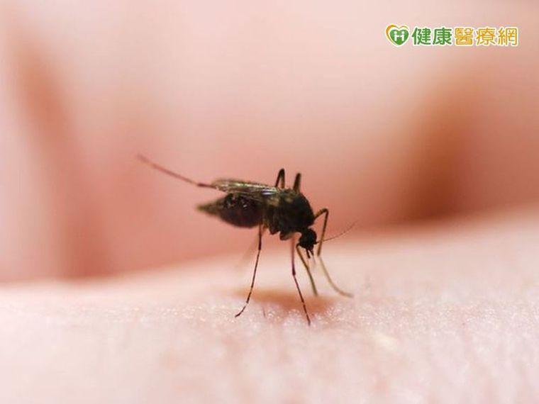 根本人體捕蚊燈!「這3類人」走到哪裡蚊子跟到哪