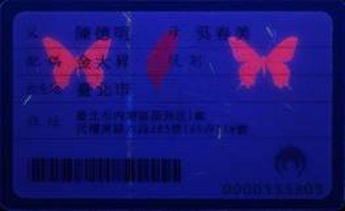 身分證隱藏的台灣種寬尾鳳蝶,要照射紫外線燈光才看得見。 記者楊正海/翻攝