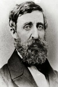 梭羅(Henry David Thoreau)。圖/取自wikipedia