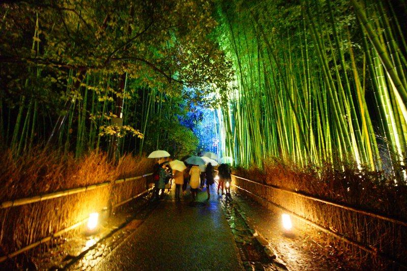 嵐山著名的竹林小徑也有夜間點燈的活動。