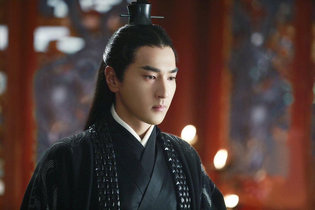 趙又廷演出「三生三世十里桃花」靠演技征服觀眾。圖/中視提供