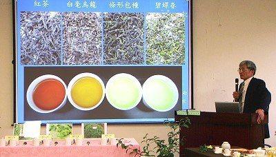 台大園藝系教授陳右人用茶葉帶領學生環遊世界,深受學生族群喜愛。 圖/報系資料照