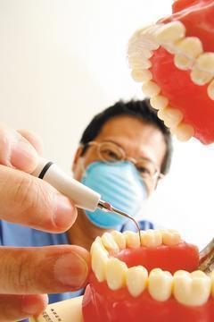 牙齒缺牙該不該做假牙?聖保祿醫院牙科醫師楊曉婷楊曉婷認為,只要影響咬合功能就得做...