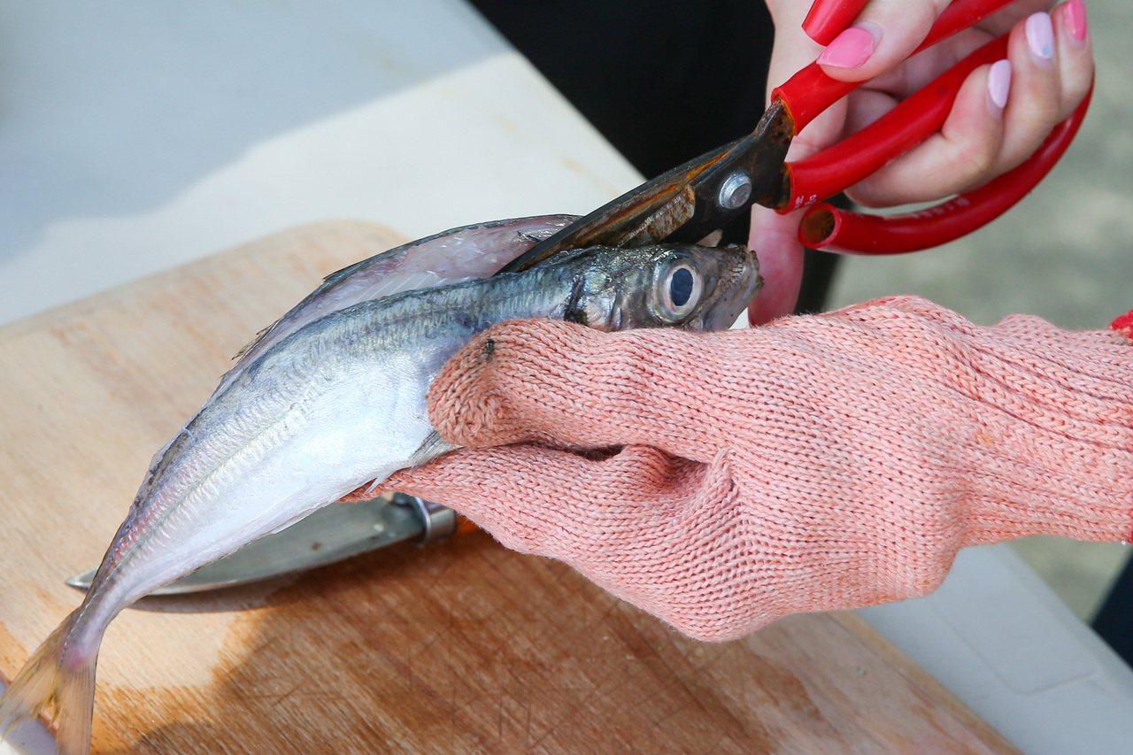 南方澳討海文物館,體驗自製一夜干 ,先用刀具將魚剖開後清除內臟等雜質。記者王騰毅...