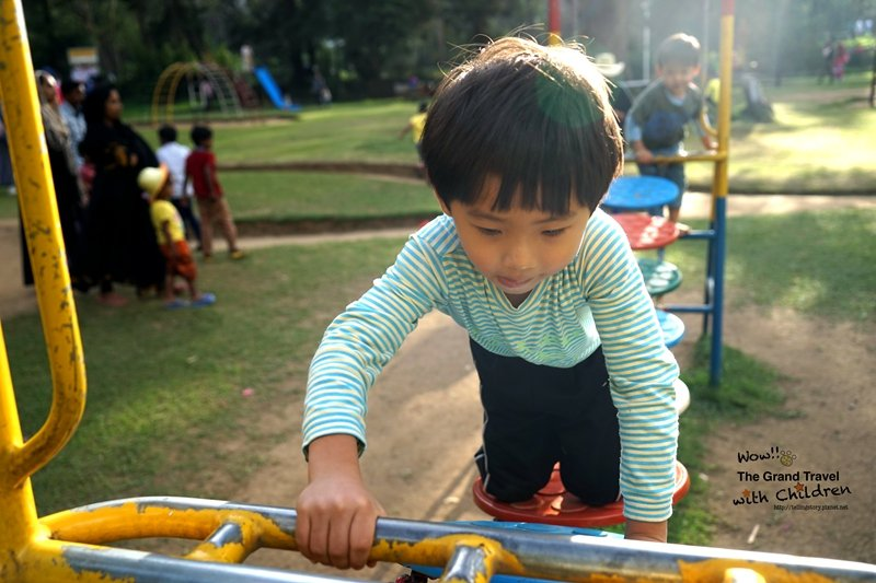在維多利亞公園,大人忙賞花,小孩忙攀爬。攝影:吳成夫Bruce Wu