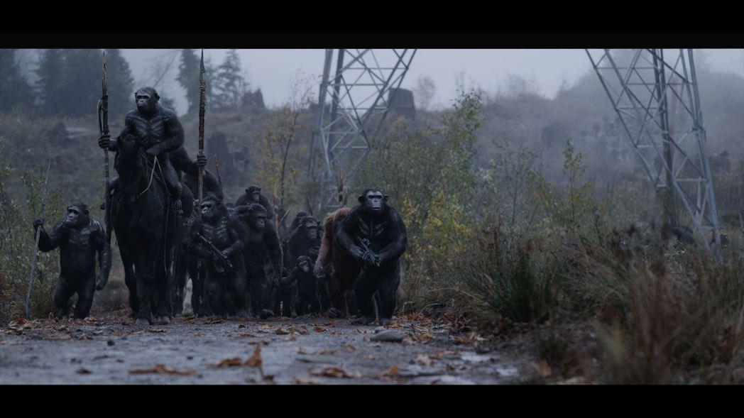 「猩球崛起3:終極決戰」劇照。圖/福斯提供