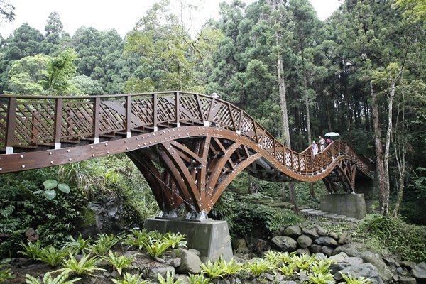 圖片提供/溪頭自然教育園區