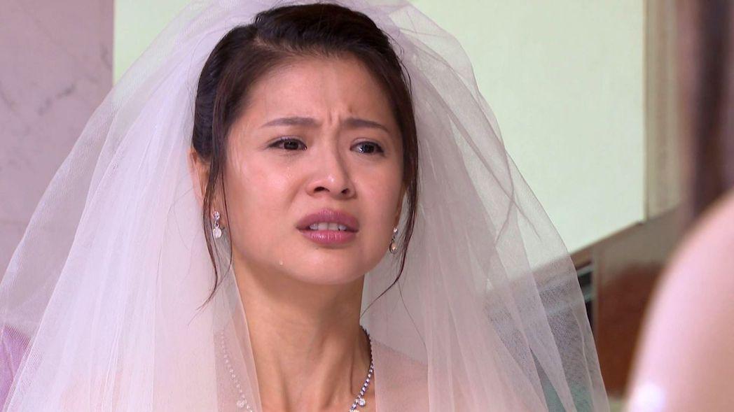 李燕在「一家人」中婚又結不成了。圖/三立提供