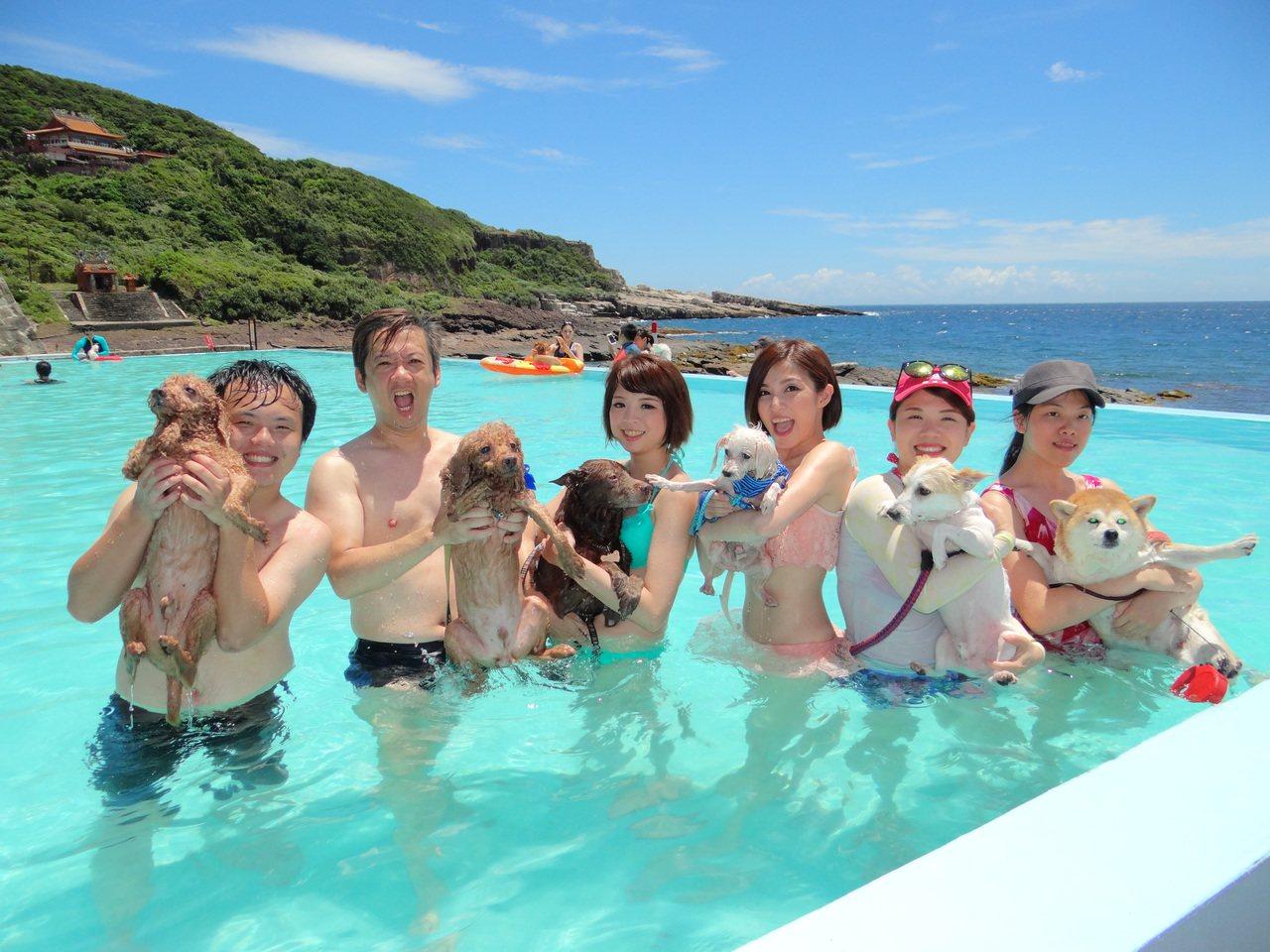 飼主帶毛小孩一起游泳消暑。記者游明煌/翻攝