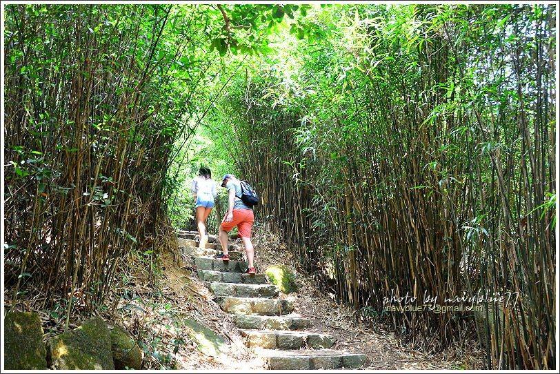↑步道一開始有階梯,之後就都是土石小徑了。