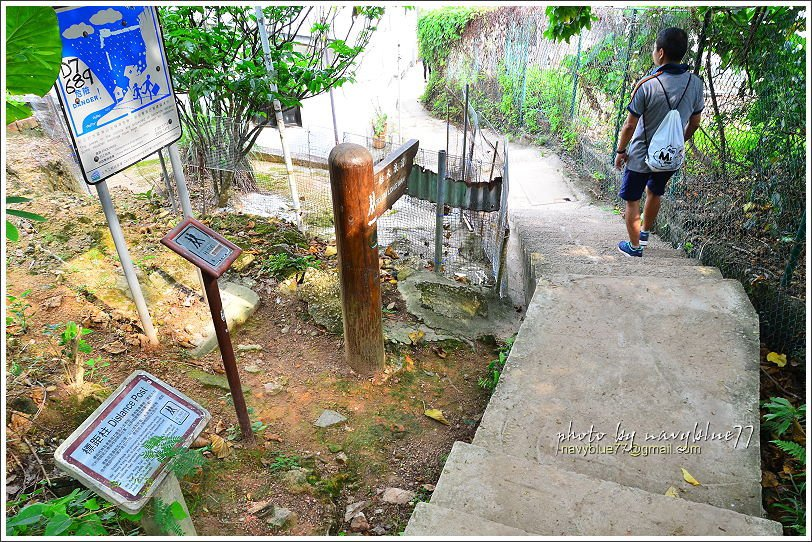 ↑到H100標距柱剛好到達大浪灣村的步道出口。
