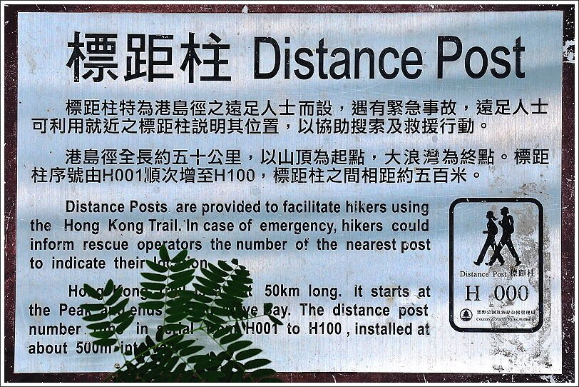 ↑認識一下在香港走郊野步道常看到的標距柱,我們走的只是港島徑的其中一部分。