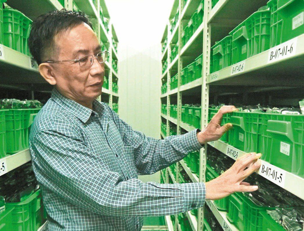 「種原庫」現存六萬多類種子,每年輪種以維持數量並調查種子特性。 記者洪欣慈/攝影